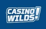 CasinoWilds - Mahtava talletusbonus, sekä ilmaiskierroksia